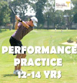 High School Golf Program with Danford Golf in Goodyear Arzona